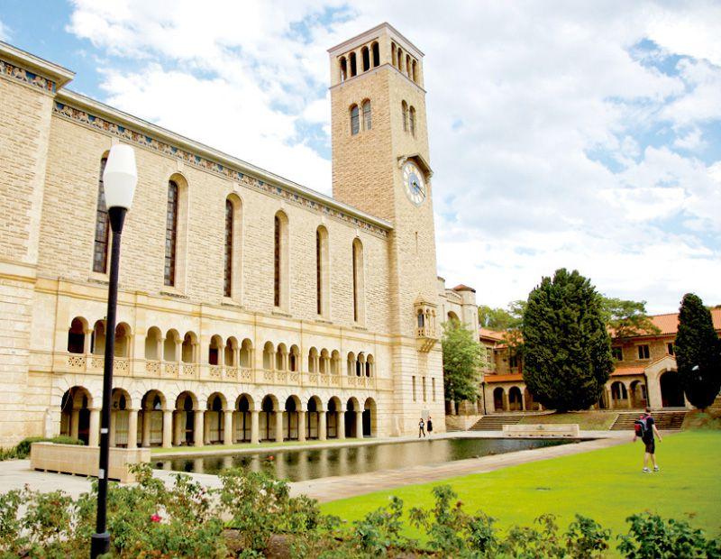海外大学への進学
